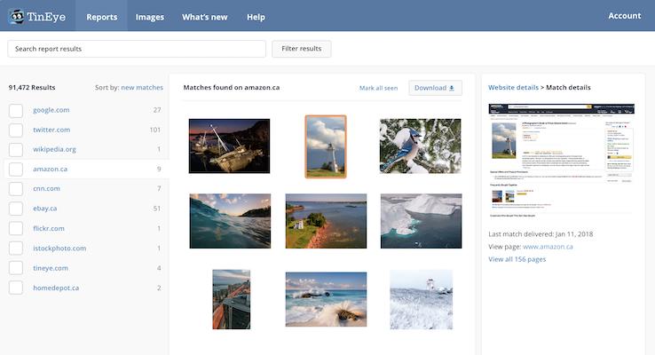 Tineye Reverse Image Search Tool